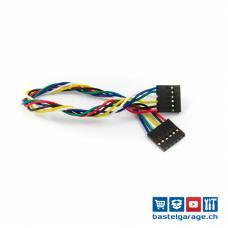 Dupont Kabel 6*P 20cm